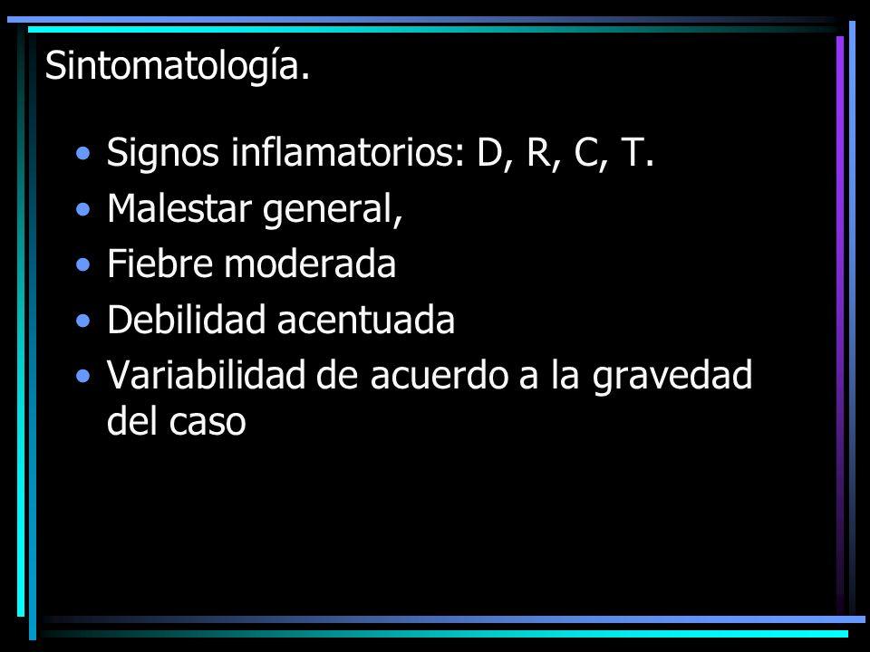 Sintomatología. Signos inflamatorios: D, R, C, T. Malestar general, Fiebre moderada. Debilidad acentuada.