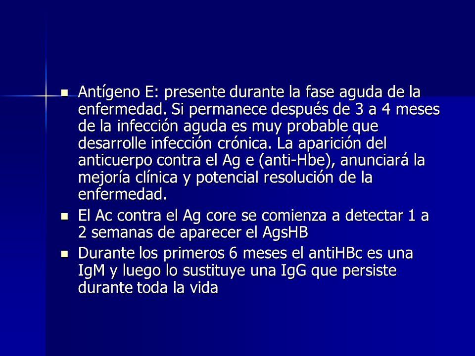 Antígeno E: presente durante la fase aguda de la enfermedad