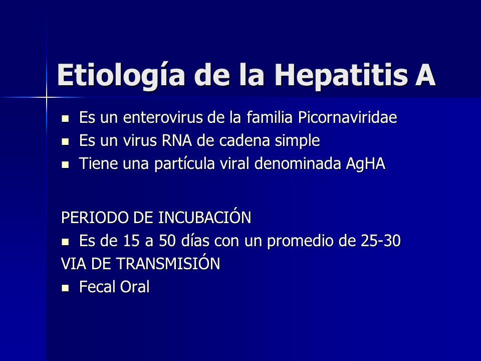 Etiología de la Hepatitis A