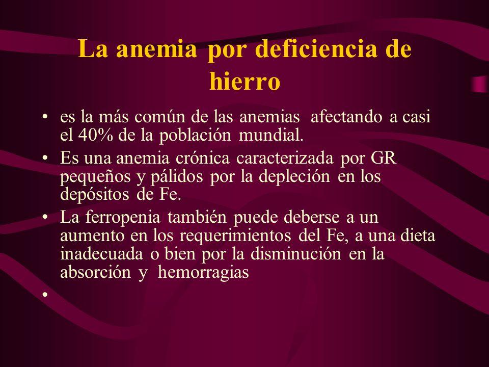 La anemia por deficiencia de hierro