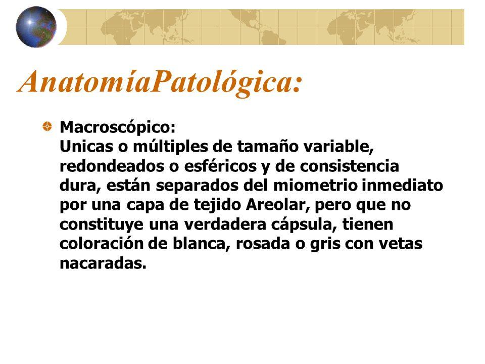 AnatomíaPatológica: