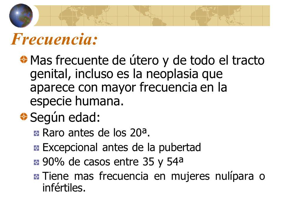 Frecuencia: Mas frecuente de útero y de todo el tracto genital, incluso es la neoplasia que aparece con mayor frecuencia en la especie humana.