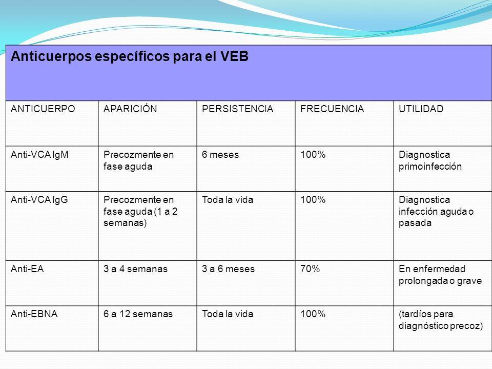 Anticuerpos específicos para el VEB