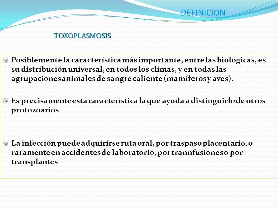 DEFINICION TOXOPLASMOSIS.