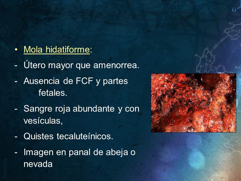 Mola hidatiforme: Útero mayor que amenorrea. Ausencia de FCF y partes fetales. Sangre roja abundante y con vesículas,