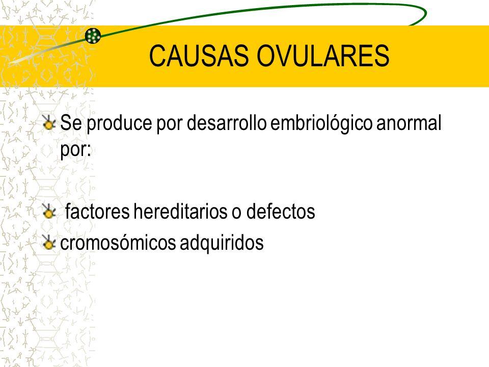 CAUSAS OVULARES Se produce por desarrollo embriológico anormal por: