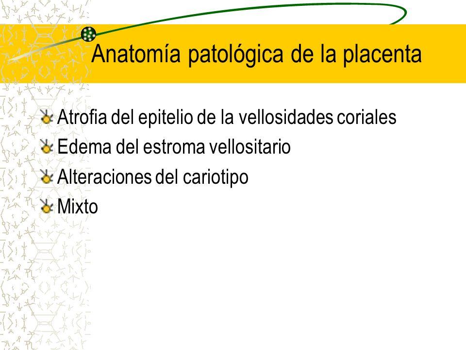 Anatomía patológica de la placenta