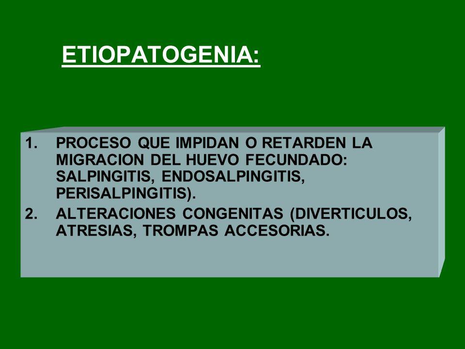 ETIOPATOGENIA: PROCESO QUE IMPIDAN O RETARDEN LA MIGRACION DEL HUEVO FECUNDADO: SALPINGITIS, ENDOSALPINGITIS, PERISALPINGITIS).