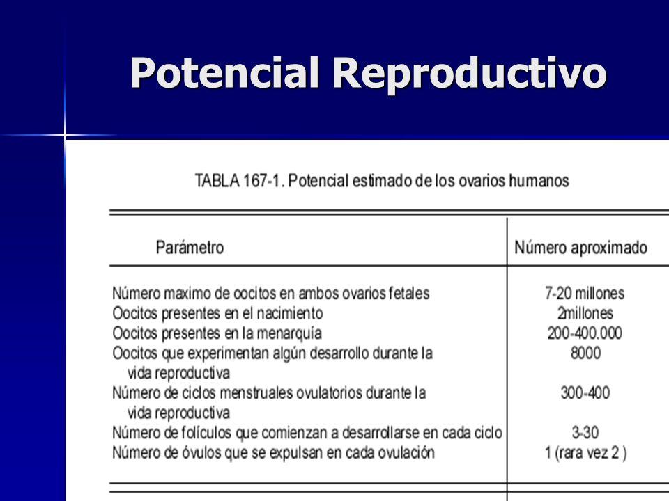 Potencial Reproductivo