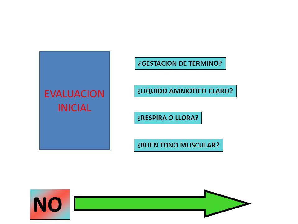 NO EVALUACION INICIAL ¿GESTACION DE TERMINO ¿LIQUIDO AMNIOTICO CLARO
