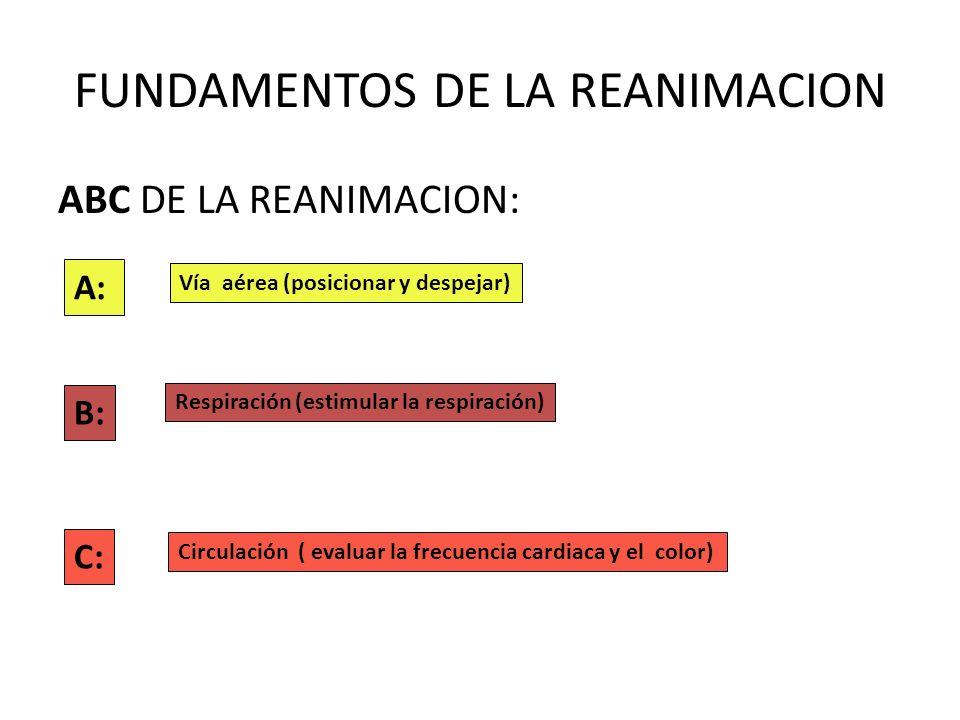 FUNDAMENTOS DE LA REANIMACION