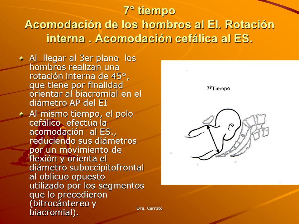7° tiempo Acomodación de los hombros al EI. Rotación interna