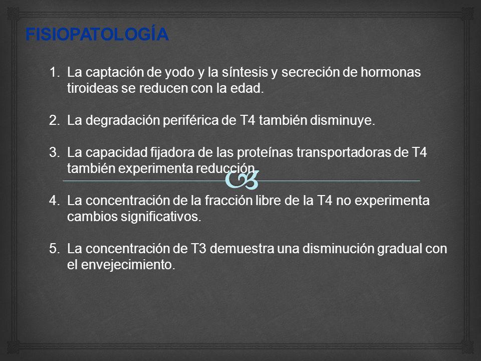 FISIOPATOLOGÍALa captación de yodo y la síntesis y secreción de hormonas tiroideas se reducen con la edad.