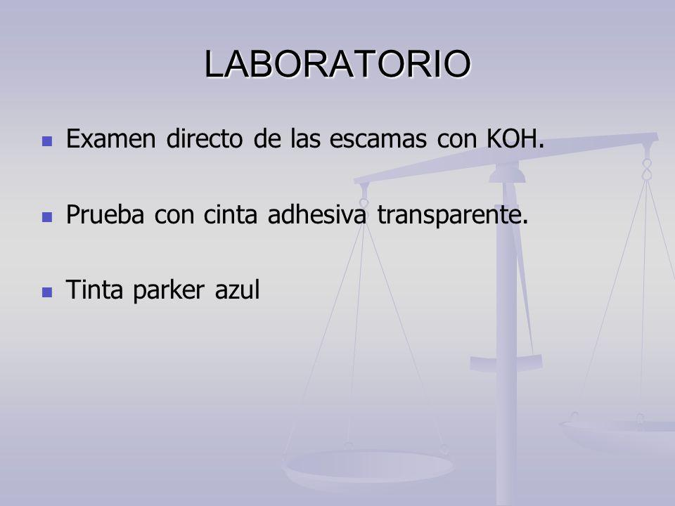 LABORATORIO Examen directo de las escamas con KOH.