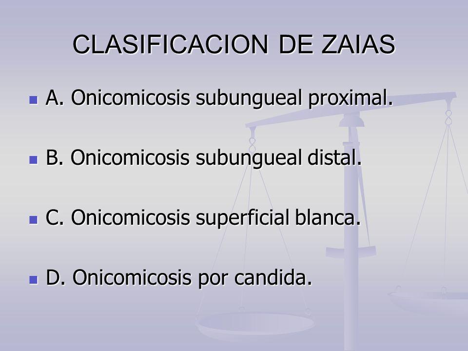 CLASIFICACION DE ZAIAS