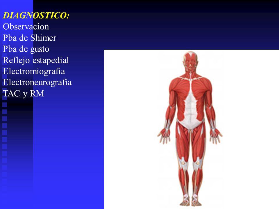 DIAGNOSTICO: Observacion. Pba de Shimer. Pba de gusto. Reflejo estapedial. Electromiografia. Electroneurografia.