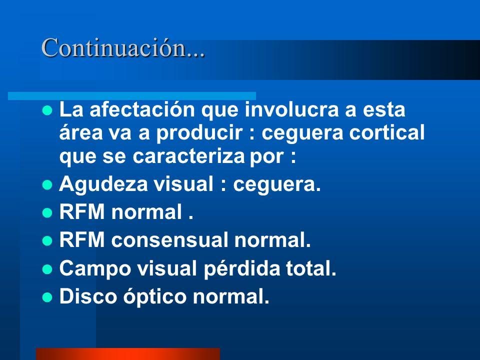 Continuación... La afectación que involucra a esta área va a producir : ceguera cortical que se caracteriza por :