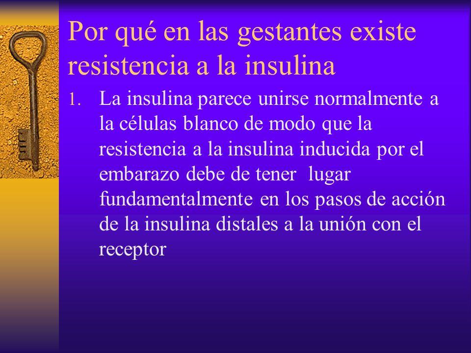 Por qué en las gestantes existe resistencia a la insulina