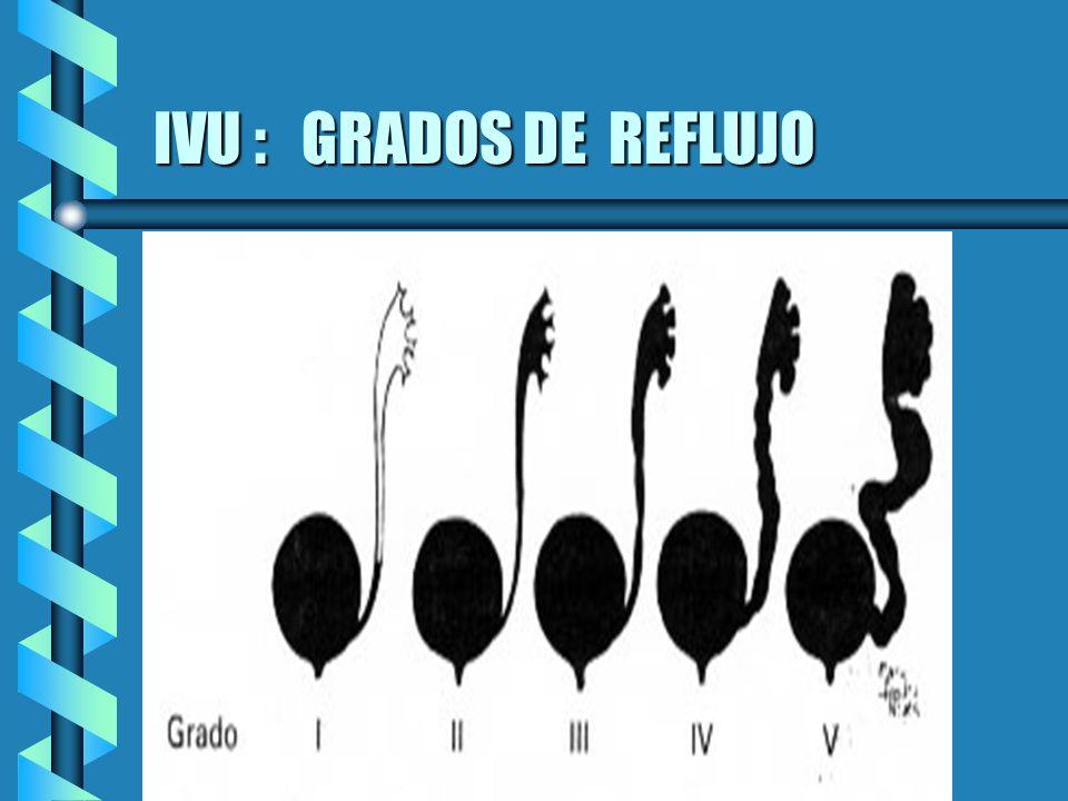 IVU : GRADOS DE REFLUJO