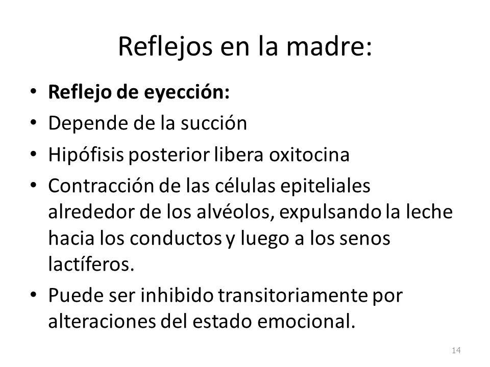 Reflejos en la madre: Reflejo de eyección: Depende de la succión