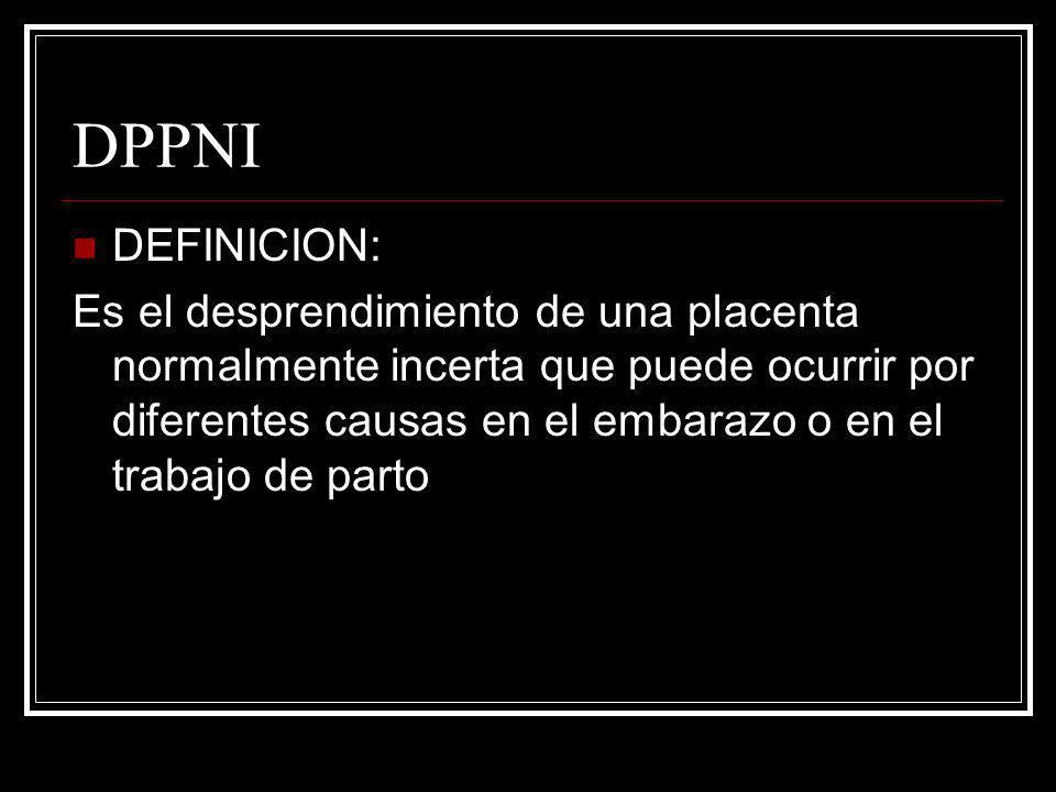 DPPNI DEFINICION:
