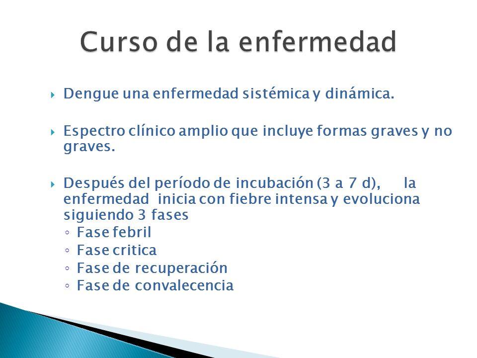 Curso de la enfermedad Dengue una enfermedad sistémica y dinámica.