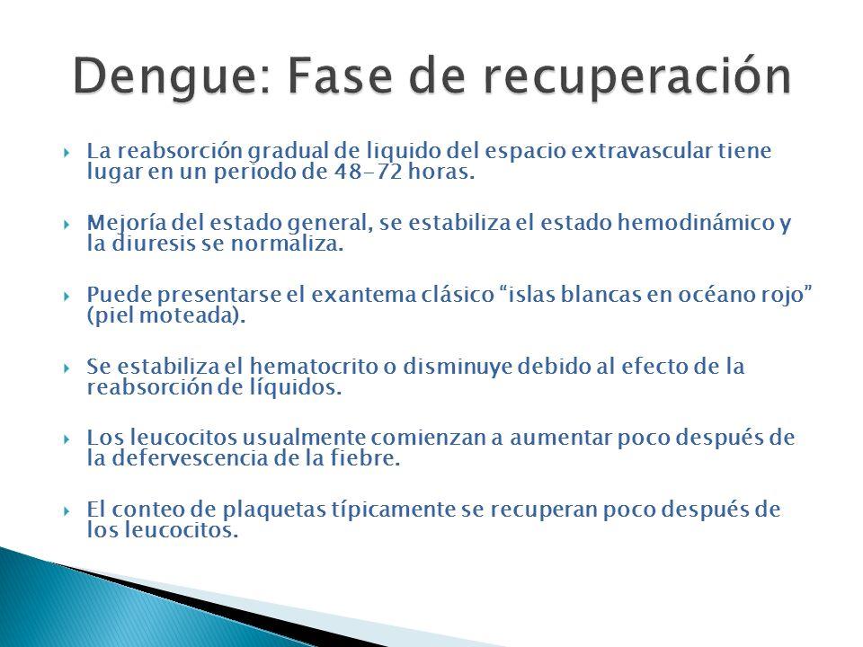 Dengue: Fase de recuperación