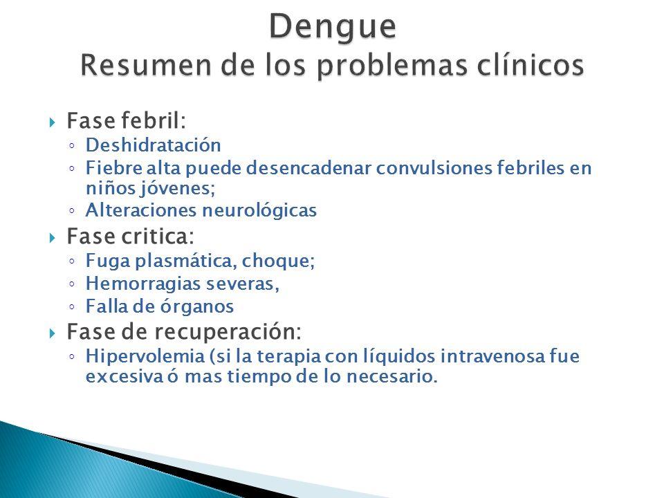 Dengue Resumen de los problemas clínicos