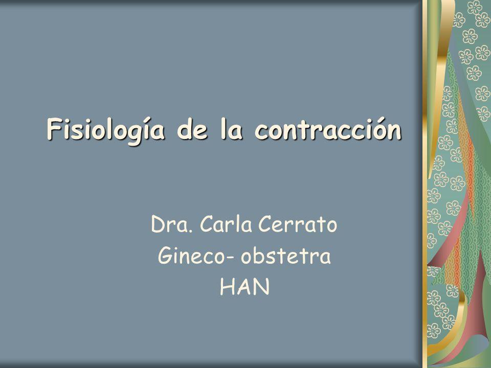 Fisiología de la contracción