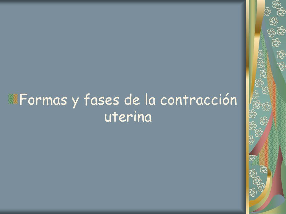Formas y fases de la contracción uterina