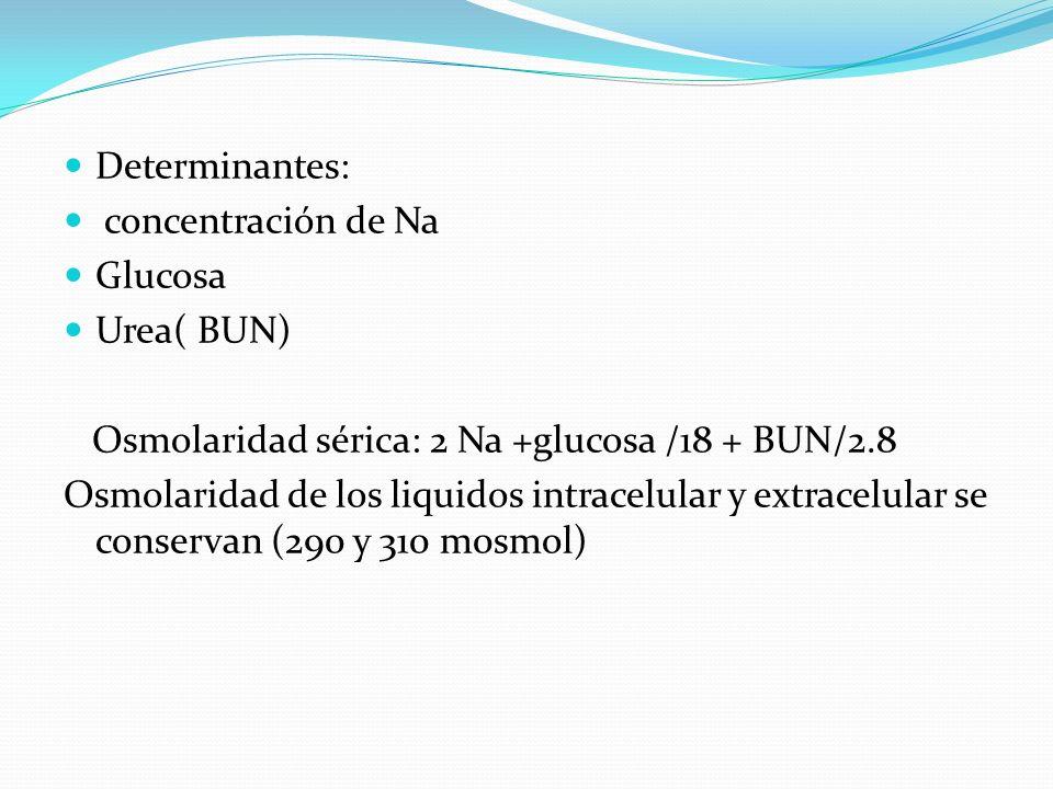 Determinantes: concentración de Na. Glucosa. Urea( BUN) Osmolaridad sérica: 2 Na +glucosa /18 + BUN/2.8.