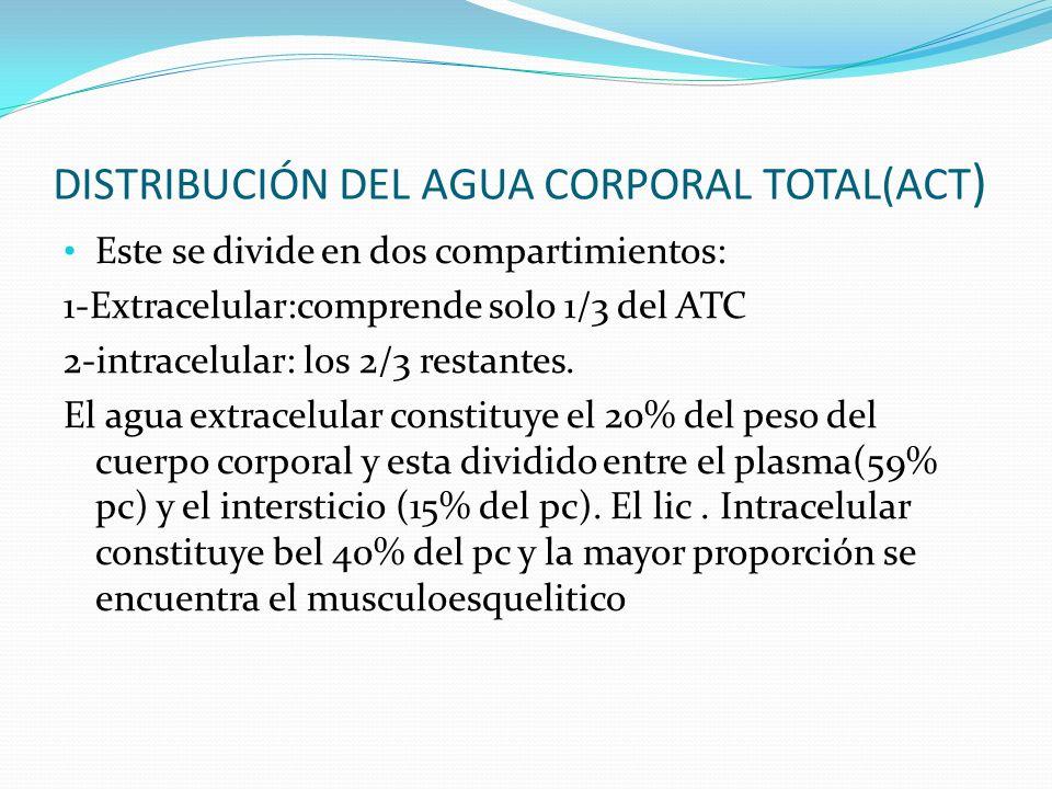 DISTRIBUCIÓN DEL AGUA CORPORAL TOTAL(ACT)