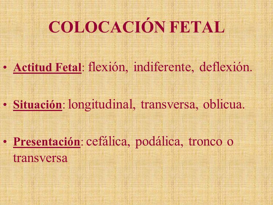 COLOCACIÓN FETAL Actitud Fetal: flexión, indiferente, deflexión.