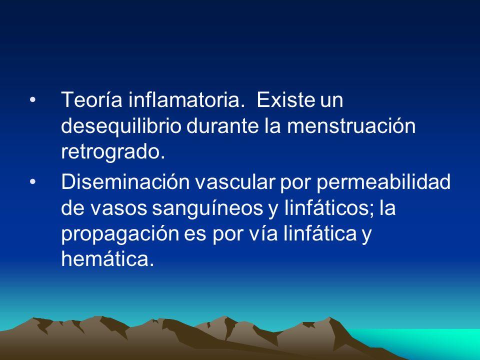 Teoría inflamatoria. Existe un desequilibrio durante la menstruación retrogrado.
