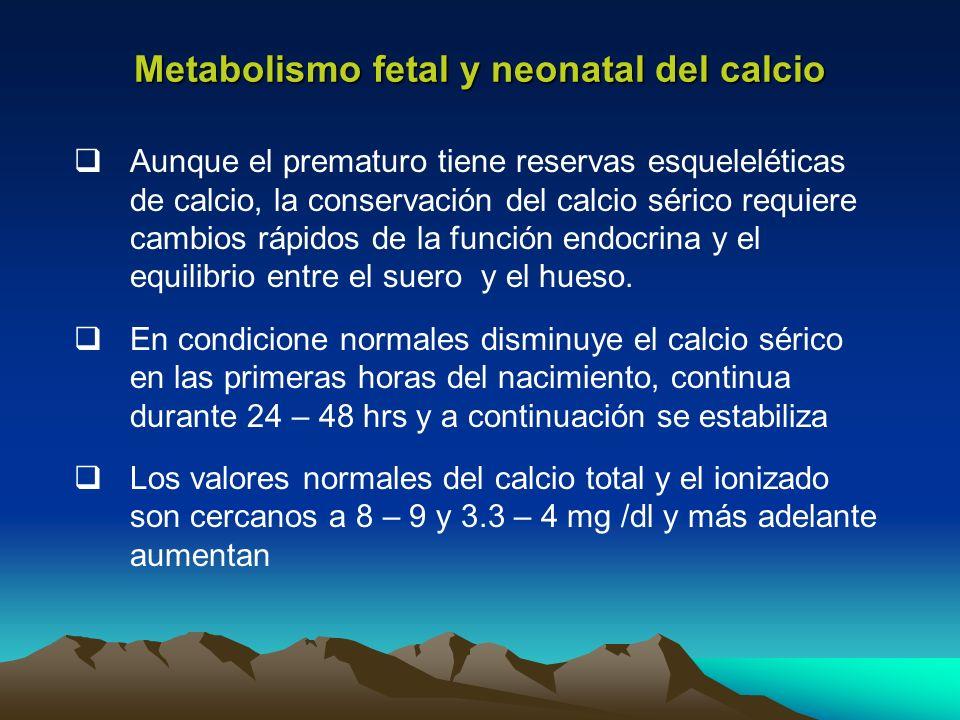 Metabolismo fetal y neonatal del calcio