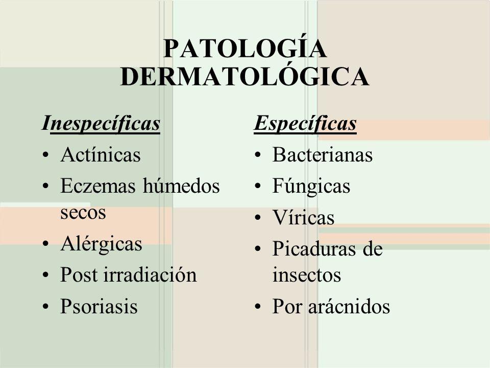 PATOLOGÍA DERMATOLÓGICA