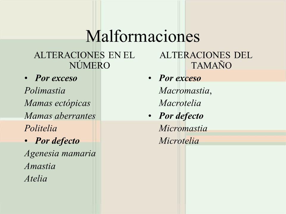 Malformaciones ALTERACIONES EN EL NÚMERO Por exceso Polimastia