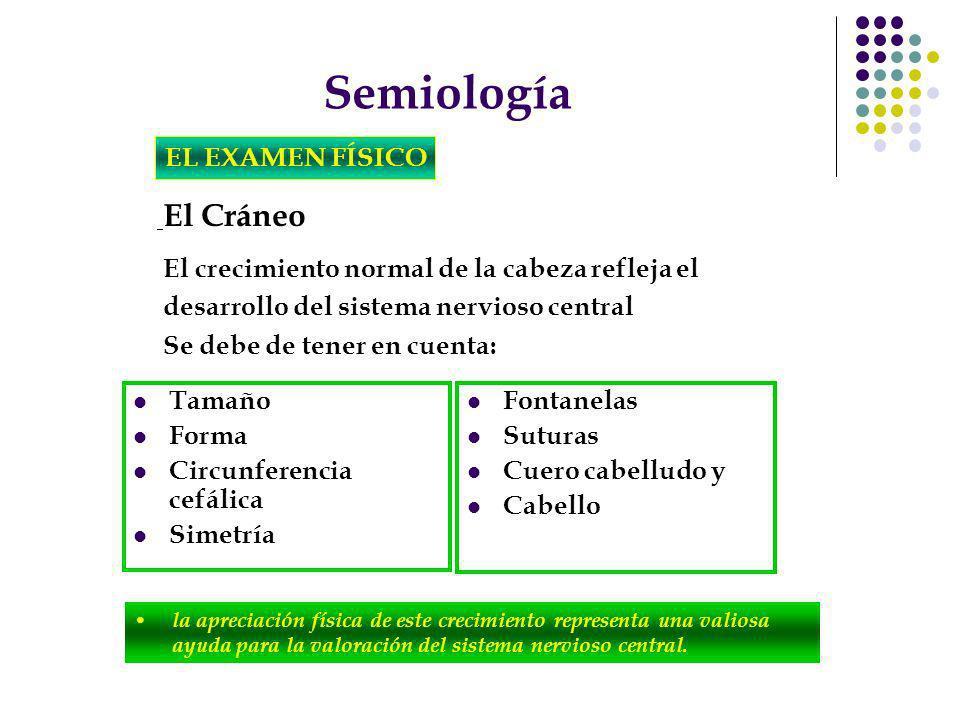 Semiología EL EXAMEN FÍSICO Se debe de tener en cuenta: Tamaño Forma