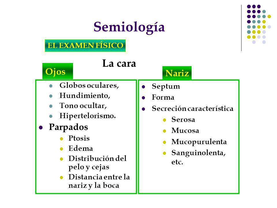 Semiología La cara Ojos Nariz Parpados EL EXAMEN FÍSICO