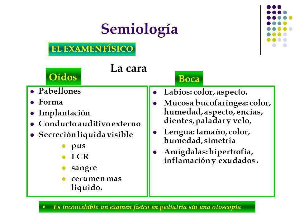 Semiología La cara Oídos Boca EL EXAMEN FÍSICO Pabellones Forma