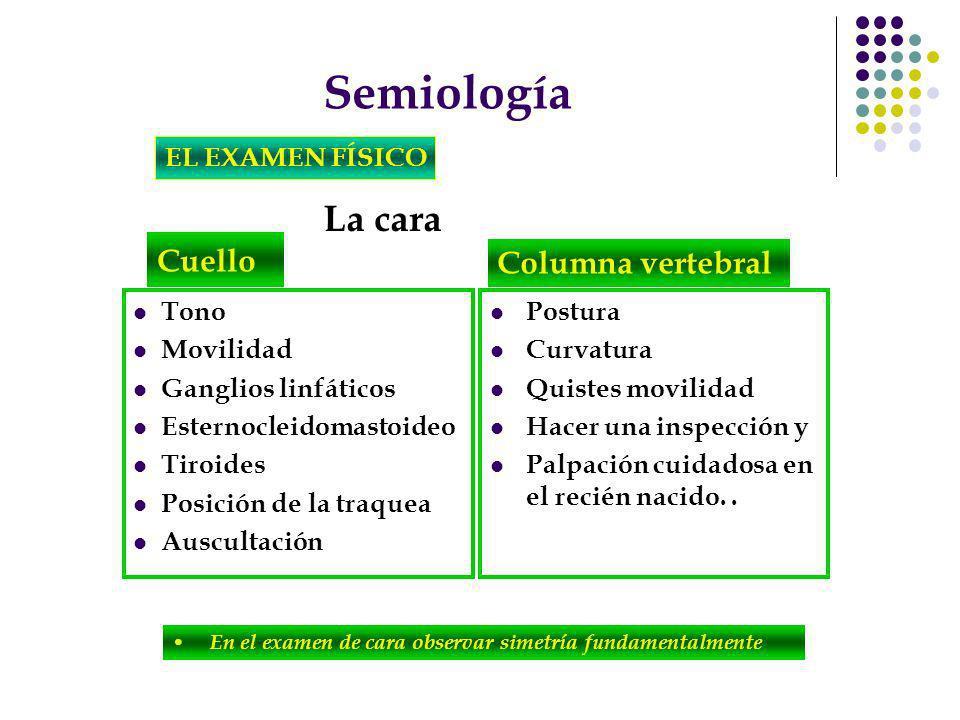 Semiología La cara Cuello Columna vertebral EL EXAMEN FÍSICO Tono