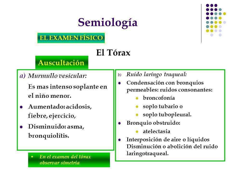 Semiología El Tórax Auscultación EL EXAMEN FÍSICO Murmullo vesicular: