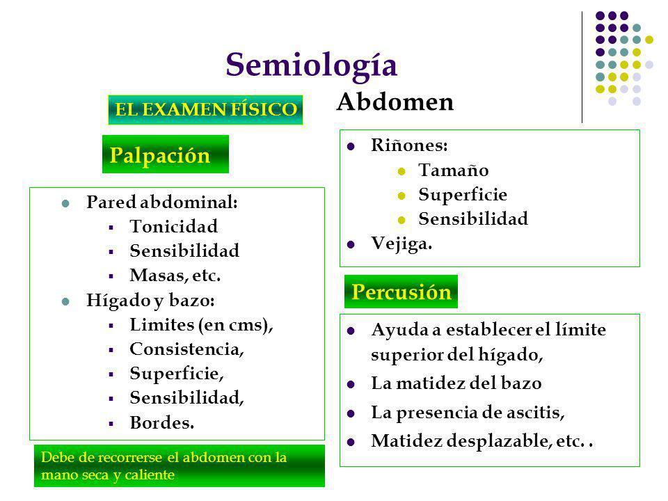 Semiología Abdomen Palpación Percusión EL EXAMEN FÍSICO Riñones: