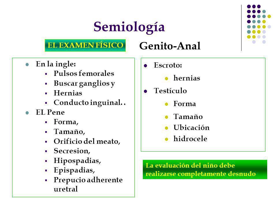 Semiología Genito-Anal EL EXAMEN FÍSICO En la ingle: Pulsos femorales