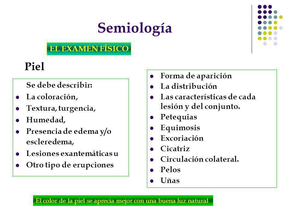 Semiología Piel EL EXAMEN FÍSICO Forma de aparición La distribución