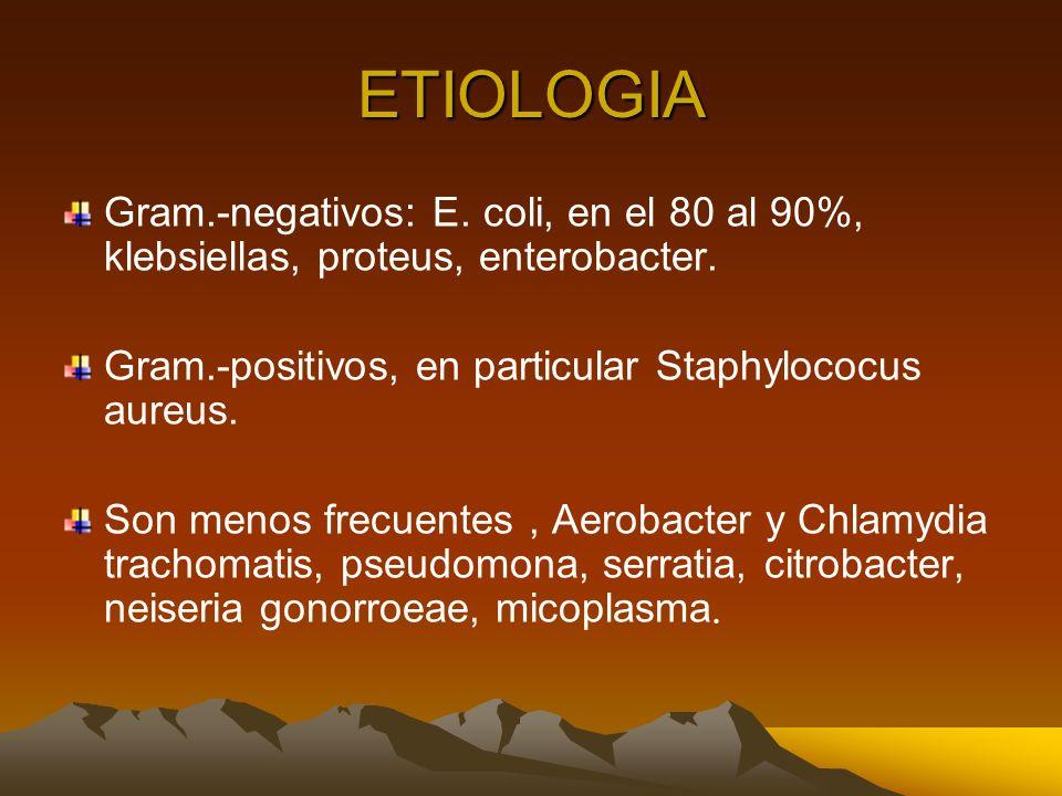 ETIOLOGIA Gram.-negativos: E. coli, en el 80 al 90%, klebsiellas, proteus, enterobacter. Gram.-positivos, en particular Staphylococus aureus.