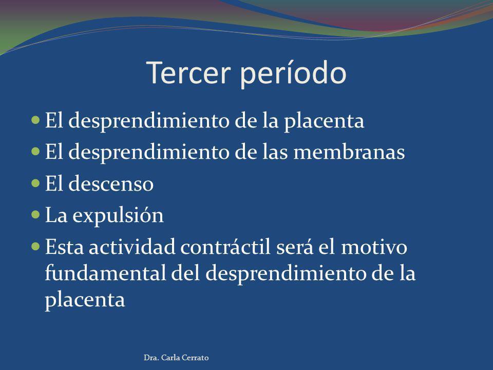 Tercer período El desprendimiento de la placenta