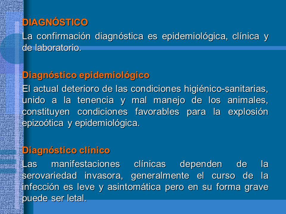 DIAGNÓSTICO La confirmación diagnóstica es epidemiológica, clínica y de laboratorio. Diagnóstico epidemiológico.