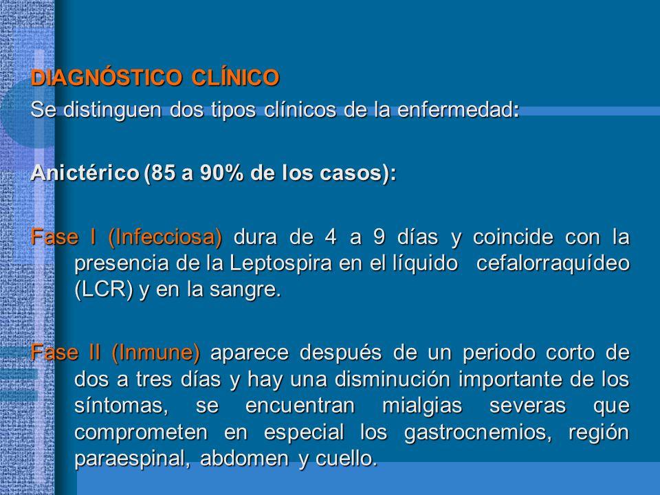 DIAGNÓSTICO CLÍNICO Se distinguen dos tipos clínicos de la enfermedad: Anictérico (85 a 90% de los casos):
