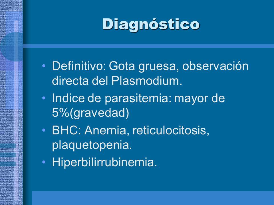 Diagnóstico Definitivo: Gota gruesa, observación directa del Plasmodium. Indice de parasitemia: mayor de 5%(gravedad)